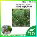 500 mg * 200 unids Nueva Llegada Vio palmetto/Serenoa repens/Sabal Extracto cápsula con el envío libre