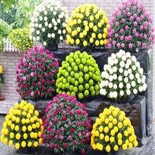Productos de jardín