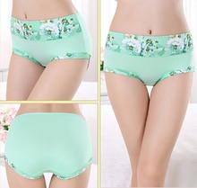Women Panties Plus size