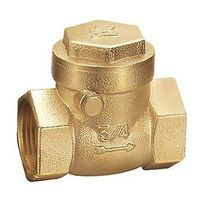 Brass 1 Inch Female BSPP Thread Swing Check Valve