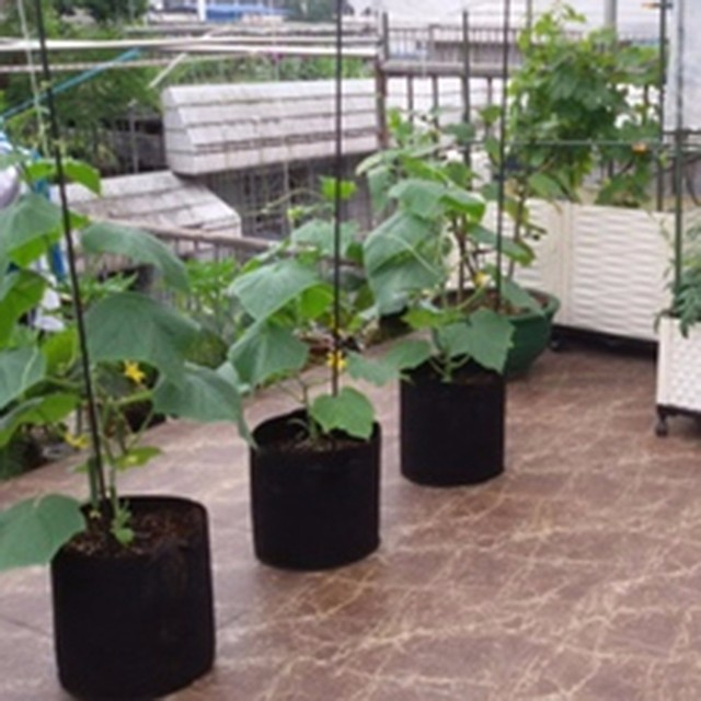 5Size 1 10 Gallon Round Black Non woven Fabrics Pots Plant