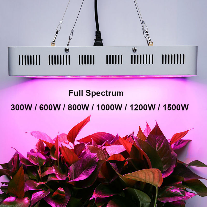 HYBER GROW 300W/600W/800W/1000W/1200W/1500W Full Spectrum LED Grow Light for Indoor Greenhouse Hydroponics Plants Growth