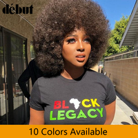 Afro Kinky Curly Wig Remy Human Hair Wigs For Women Brazilian Short Wig perruque cheveux humain Debut Lace Front Human Hair Wig