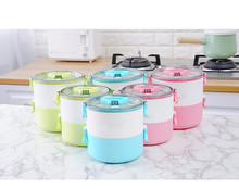 1PC 2 Layer Japanese Lunch Box Thermal For Food Bento Box LunchBox For Kids Portable Picnic School NV 003