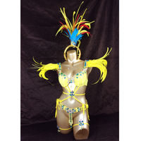 free shipping 2016 Sexy Samba Rio Carnival Costume hot selling new belly dance costume with yellow Feather Head piece
