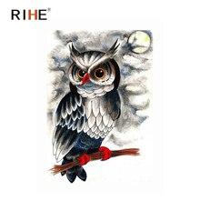 RIHE Moon Owl Diy Painting By Numbers Bird Oil On Canvas Hand Painted Cuadros Decoracion Acrylic Animal Paint Home Art