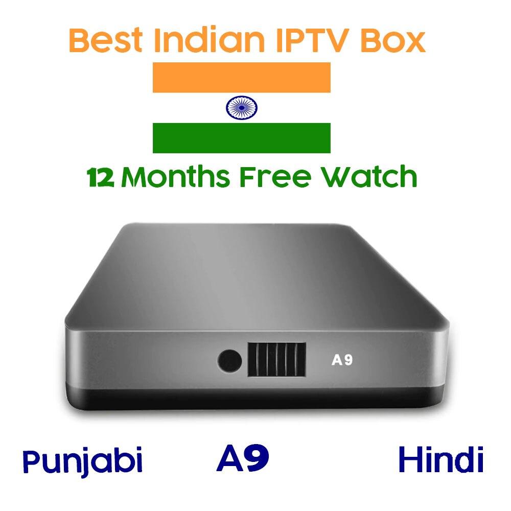 Smart Android TV Box prend en charge 12 mois d'abonnement IPTV des chaînes indiennes/Punjabi/enfants/régionales/pakistanaises et des films Vod