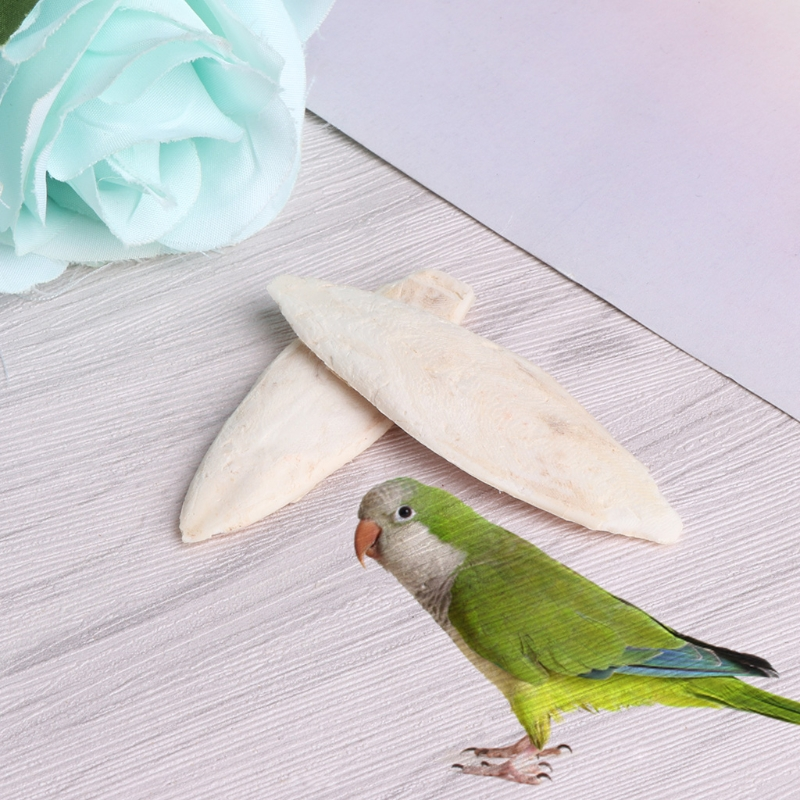 1 Bag Cuttlebone Cuttlefish ia Bone Cuttle Fish Bird Food Calcium Pickstone Pet 1