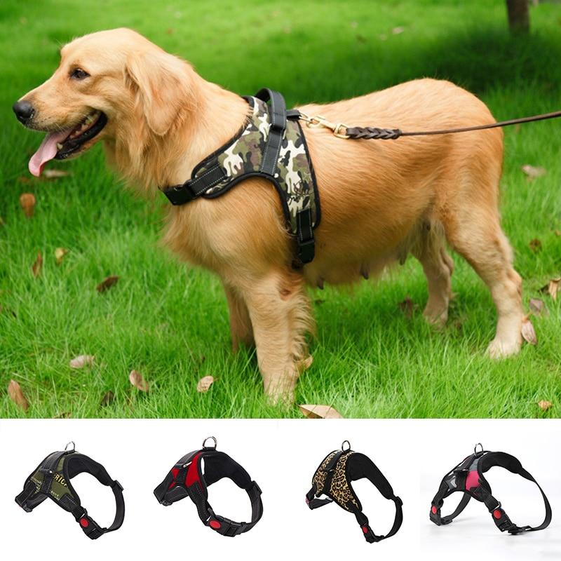 CollarDirect Martingale Dog Collar Aztec Pattern Nylon Big Heavy Duty Adjustable Wide Training Collars for Dogs Medium Large Black Pink Mint Green