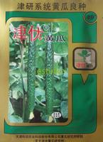 1 Pacote (20 gramas) Embalagem Original Verde Pepino Pepino Sementes de Produtos Hortícolas Sementes de Alto Rendimento Se Qualificar Resistentes À Doença Navio Livre #406