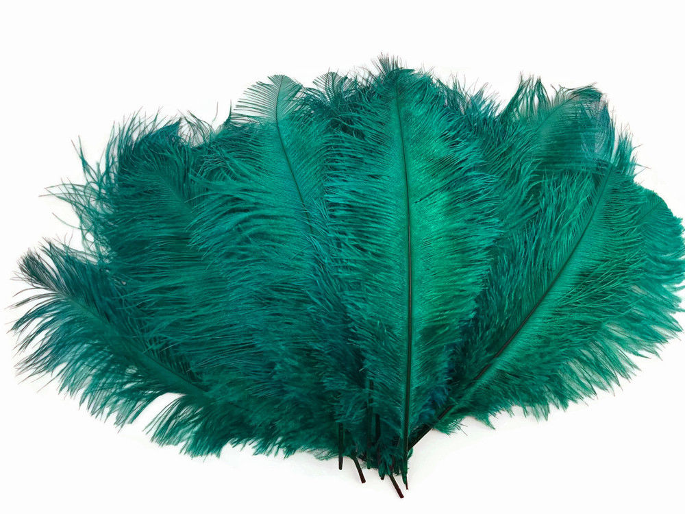 3498 10 Pieces Ostrich Feathers 12-16 Lime Green Dyed Ostrich Tail Fancy Feathers Centerpiece Craft Supplier