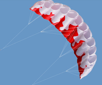 High Quality 2m Power Dual Line Flame Parafoil Parachute Sports Beach Kite With Flying Tools