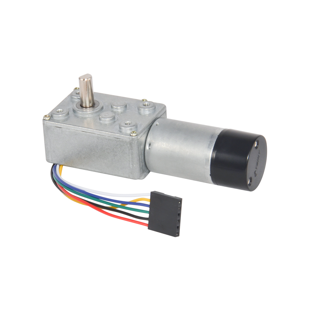 small resolution of dc worm gear motor with hall encoder 12v 3rpm 9rpm 15rpm 24rpm 45rpm 64rpm 110rpm 175rpm diy engine in dc motor from home improvement on aliexpress com
