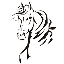 Removable Vinyl Wall Sticker Cool Horse Lovers Decal Living Room Decoration Mural Y-412