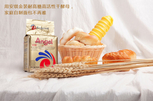 Bakery ingredients of Angel yeast gold sugar tolerance high active dry 500g bread powder