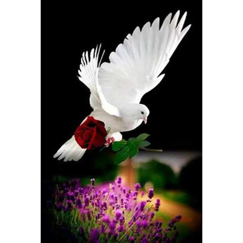 5D Diy алмазная живопись, белый голубь Роза вышивка крестиком Сделай Сам вышитое домашнее украшение горный хрусталь картина мозаика подарок