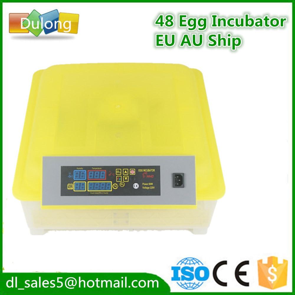 Fast ship to EU home use mini egg incubator cheap egg hatchery equipment for  48 eggs