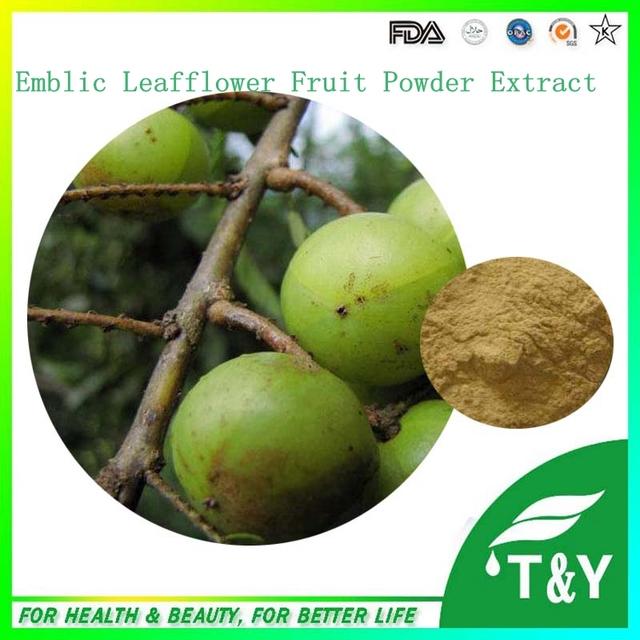 Venda quente Emblic Leafflower Frutas Extrato Em Pó 100g