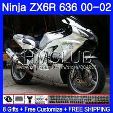 Комбинезоны для KAWASAKI NINJA ZX 600 CC 6 R ZX636 ZX6R 00 01 02 19HM. 0 ZX 636 ZX-6R ZX-636 ZX 6R 2000 2001 2002 обтекатель Акула серебристый
