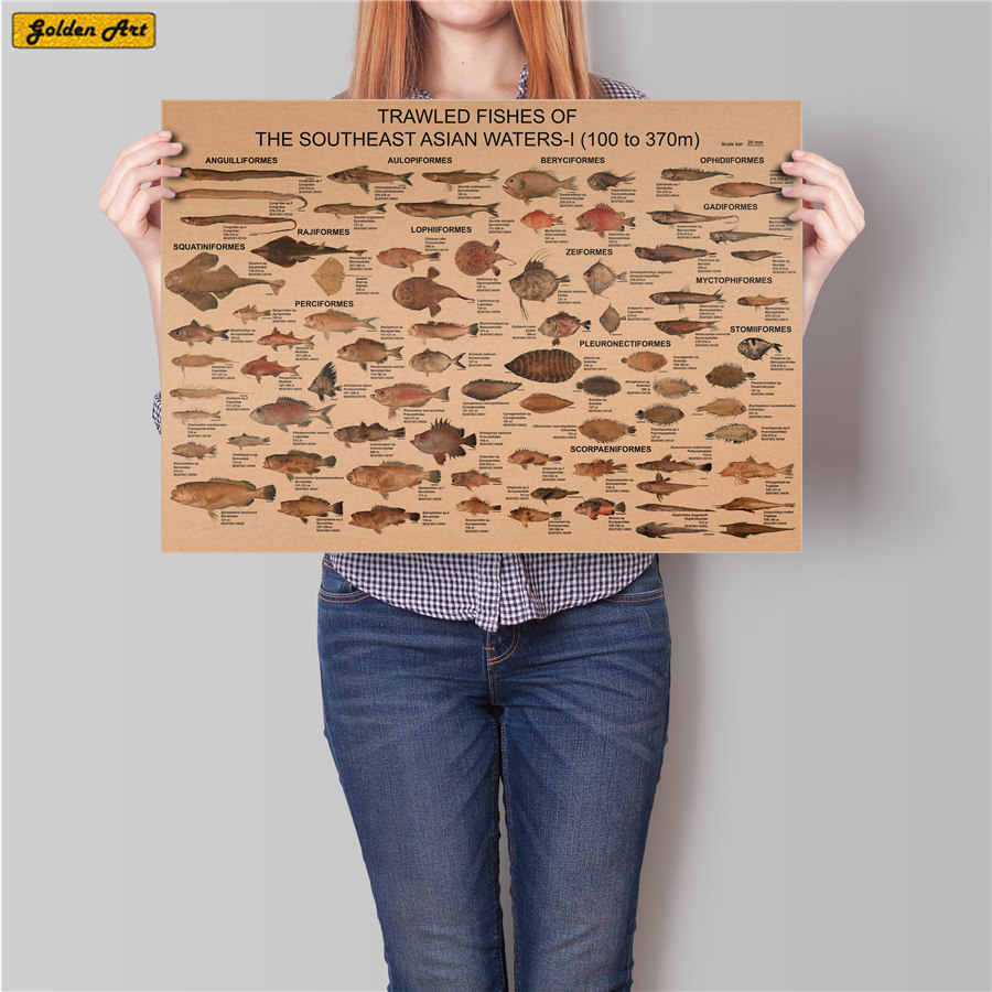 Sea fish collection chart Vintage kraft paper poster Retro bar cafe wall sticker decoration print picture painting 45.5x31.5cm