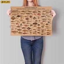 Carta de colección de peces marinos, póster de papel kraft clásico, adhesivo Retro Para bar o cafetería, decoración, estampado pintura, pintura, 45,5x31,5 cm