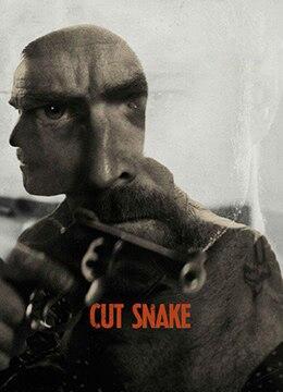 《斩蛇》2015年澳大利亚惊悚,同性电影在线观看