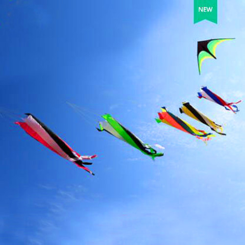 Free Shipping High Quality Large Windsock Kite Outdoor Toys Flying Nylon Ripstop Kites For Adults Koi Fish Dacron Aquiloni