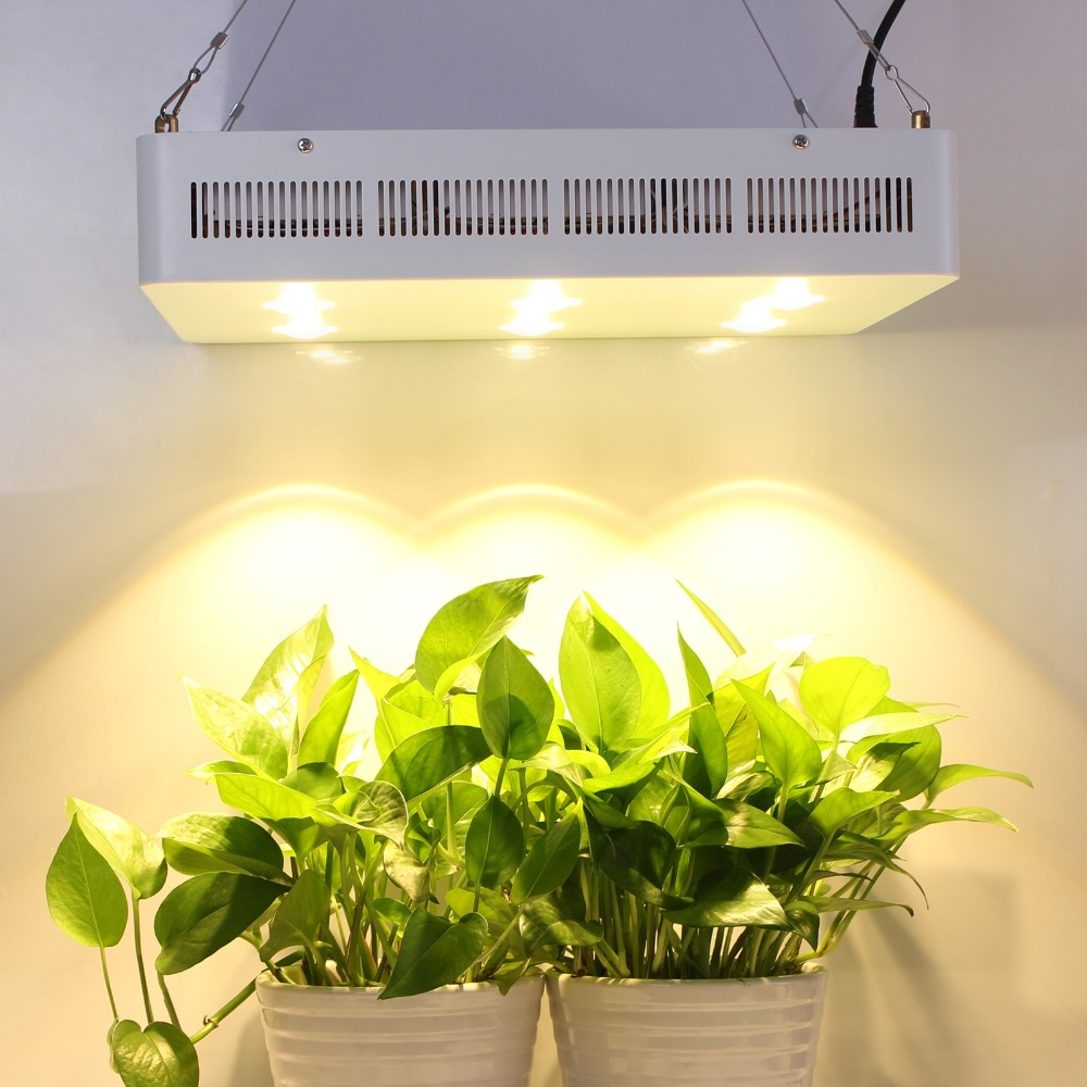 Aliexpress.com : Buy New Hot Sale 100% CREE Chip 1200w COB+lens LED Grow  Lighting For Garden Indoor Plant Growth Lighting Lamp Floweringu0026fruiting  From ...