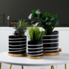 Nordic Black and White Striped Ceramic Flowerpot Succulents Pot Plant Pot with Tray Home Office Christmas New Year Decoration 1