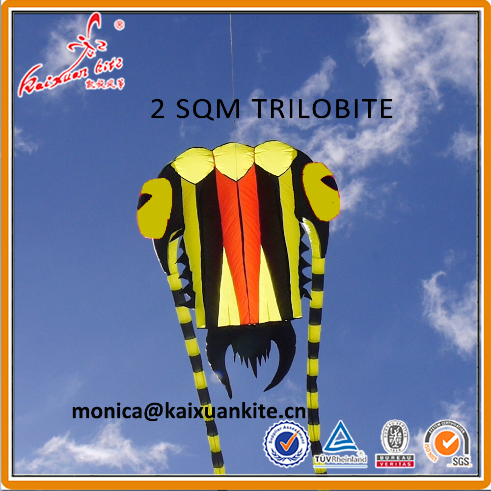 2 sqm Trilobite Kite soft kite show kite Lifter
