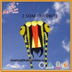 2 m² Trilobite Kite, weiche kite, zeigen kite, Heber