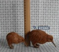 a pair of small cute simulation bird toys polyethylene & feathers Kiwi bird models