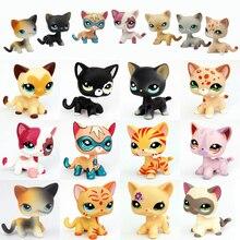 Pet shop lps pé brinquedos do gato do cão dachshund collie cocker spaniel great dane cabelo curto gatinho velho coleção figura originais