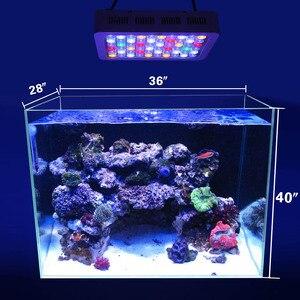 Image 5 - 180 W Marine Reef Fish tank Dimmer aquarium น้ำเค็มน้ำจืดพิพิธภัณฑ์สัตว์น้ำตกแต่งสำหรับ Coral สาหร่ายพืช