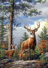 Needlework,Forest Deer Animal Tree Cross stitch Handmade 14CT Counted Canvas DIY,Cross stitch kits,Embroidery Art Home Decor