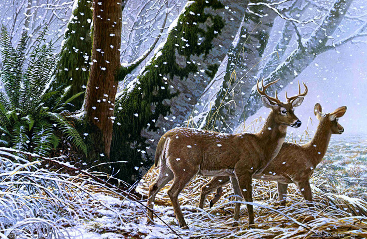 Online get cheap snowflake picture for Deer scenery