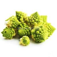 3 упак. брокколи семян / 1 упак. 20 семена капусты портулака зеленая башня цветная капуста огород семена c067