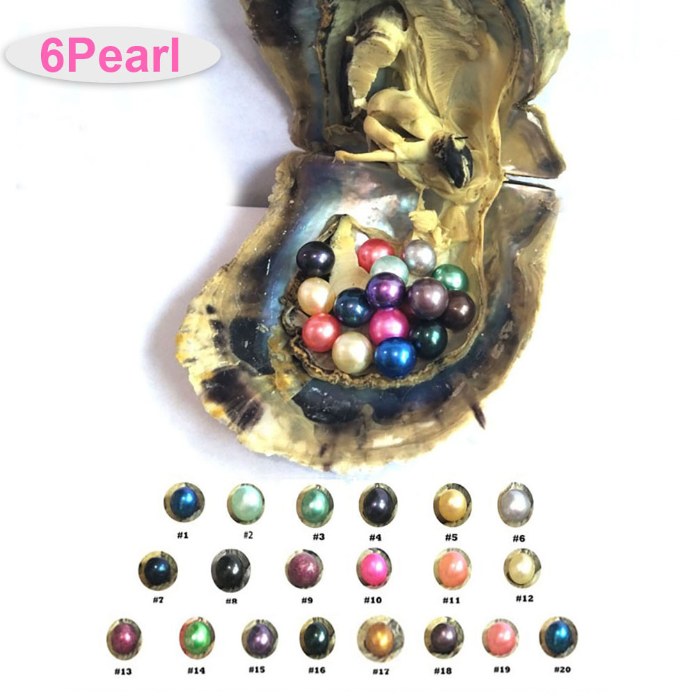 6Pcs Pearls 1Pcs Shell Wish Pearl Oyster Vacuum-packed Randomly Natural Real Pearls In Oyster Pearls 6-7mm Women's Birthday Gift