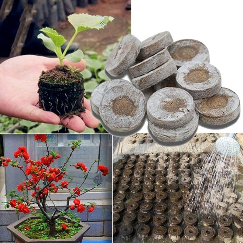 6/15 pcs Peat Pellets Seed Starting Plugs Seeds Starter Pallet Seedling Soil Block Professional Easy To Use image