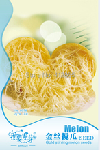 12 pcs/ Bag Rare Special Pumpkin Gold Wire Seeds, Original Pack Super Easy Grow Salad Vegetable Gold Stirring Melon Seeds