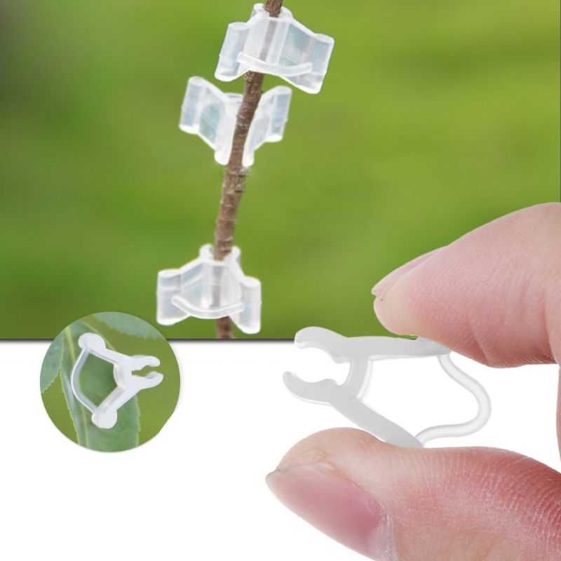 100pcs Garden Flower Plant Vine Seedlings Grafted Branches Clip Connector Fasteners Plastic Clips Garden Tool