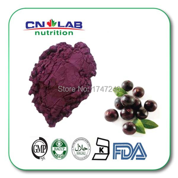200g/bag Natural fruit powder from GMP factory organic acai berry powder Acai Berry 10:1 Extract Powder  High Quility