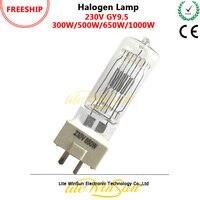 Litewinsune FREESHIP 230 v 300 watt 500 watt 650 watt 1000 watt GY9.5 3200 karat Halogen Lampe