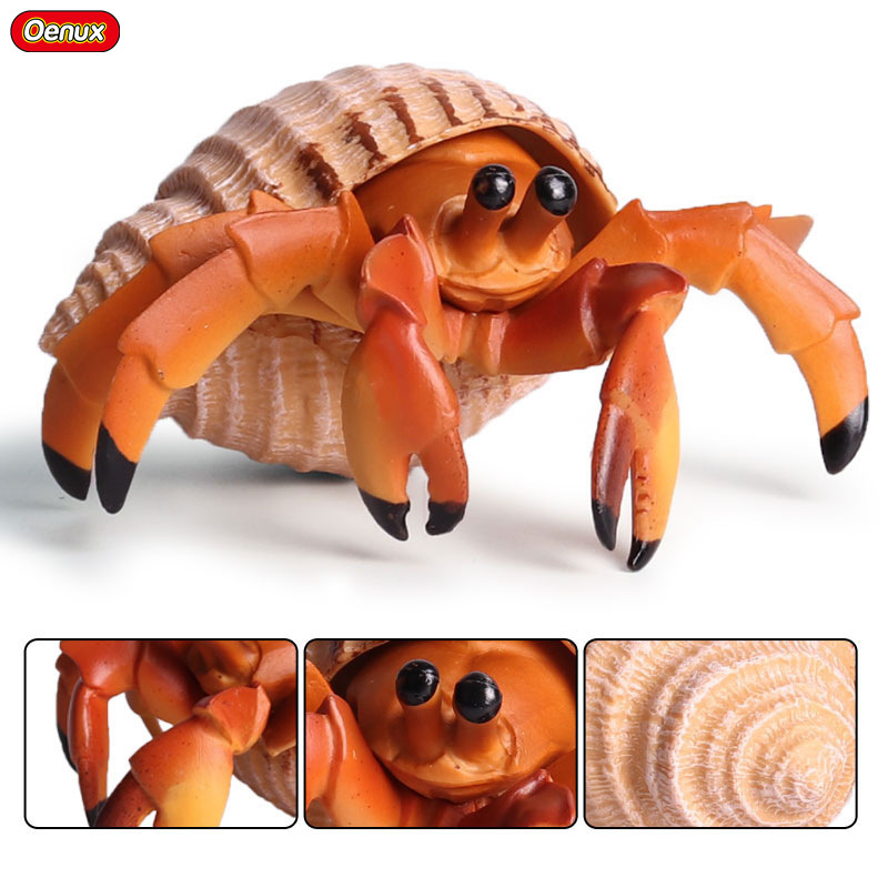 Oenux Ocean Life Hermit Crab Animal Static Model High Quality Sea Life Paguridae Action Figures Educational Toy For Kids Gift octopus marine animals model toy gift sea animalwhite whale modeling sea animal toy set plastic sea life figurine