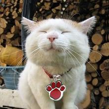 Персонализированный гравированный блеск лапы Печать тегов Dog Cat Pet ID Теги Отражающий 0326