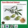 200g Puro Polvo de Extracto de Hoja de Olivo, 40% Oleuropeína Polvo Suplemento Dietético Ehancing Inmunidad