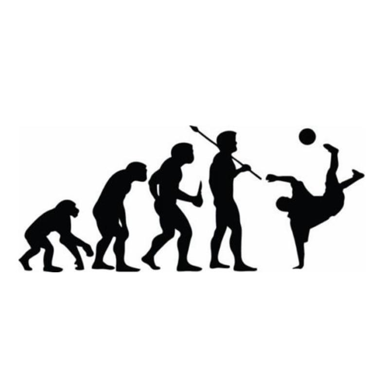 Evolution Football Vinyl Decal Decor Sticker