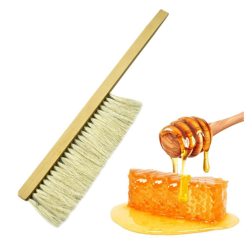 Image 2 - Инструменты для пчеловодства деревянная ОСА щетка сметка два ряда волосы конского хвоста новая пчелиная щетка оборудование для пчеловодства-in Инструменты для пчеловодства from Дом и животные