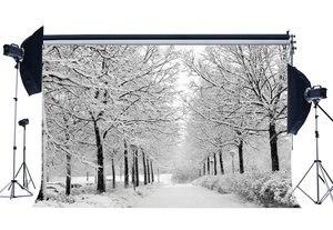 Image 1 - التصوير خلفية عيد الميلاد شجرة ريفي الغابات المرور أضواء تغطيها الثلوج المشهد طبيعة الشتاء المشهد عيد الميلاد خلفية