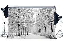 Fondo de fotografía árbol de Navidad rústico bosque tráfico luces nieve cubierto paisaje naturaleza invierno escena Navidad fondo